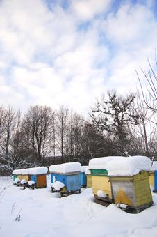 Free Apiary In Wintertime Royalty Free Stock Photos - 17576338