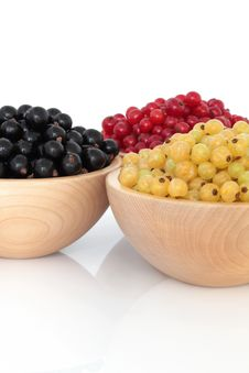 Free Red, Black And White Currants Stock Images - 17577364