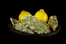 Free Oysters And Lemons Stock Image - 17577371
