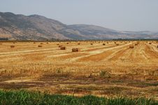 Free Haystack Stock Photography - 17579432