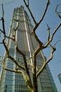 Free Jin Mao Tower Stock Photo - 17589560