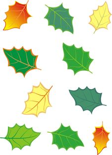 Free Set Of Leaves. Royalty Free Stock Image - 17581256