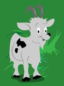 Free Goat Stock Photos - 17585023