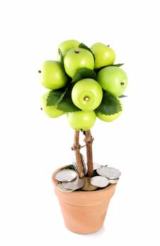 Free Money Apple Tree Stock Images - 17585954