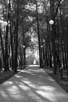 Free Alley In The Park Stock Photography - 17588612