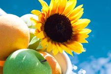 Free Fresh Fruit In Bowl With Sunflower Stock Image - 17588651