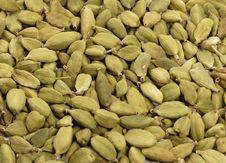 Dried Cardamom Royalty Free Stock Photo