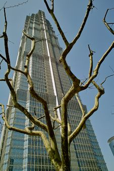 Free Jin Mao Tower Stock Photo - 17589560