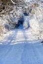 Free Winter Walkway Stock Photo - 17592180