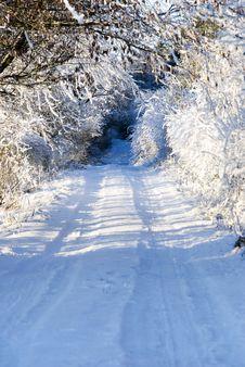 Winter Walkway Stock Photo