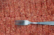 Free Fork And Minced Meat Royalty Free Stock Images - 17593029