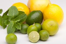 Free Lemons And Limes Stock Photos - 17595613