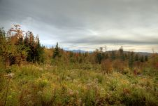 Free Autumn Scene Stock Image - 17597671