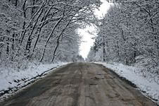 Free Snowy Tunnel Road From Forest To Cloudy Sky Stock Photography - 17597872