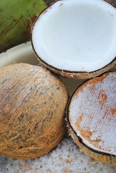 The Grater And Coconut Stock Images