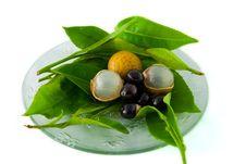 Free Longan Fruit Stock Photo - 17599590