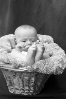 Free Baby In Basket Royalty Free Stock Photos - 1763258