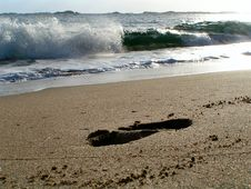 Free Footprint In The Sand Royalty Free Stock Photos - 1769608