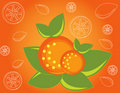 Free Abstract Fruit Illustration  Orange Stock Photo - 17606660
