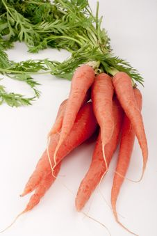Free Beam Carrots Stock Images - 17600314
