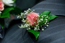 Free Red Rose On A Groom Coat Stock Photo - 17604040
