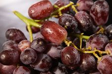 Free Bunch Of Wet Red Grapes Stock Image - 17604711