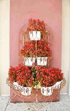 Free Begonias In Planters Stock Image - 17606141