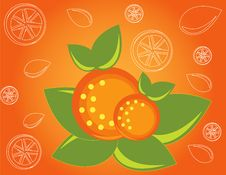 Free Abstract Fruit Illustration  Orange Stock Photo - 17606660