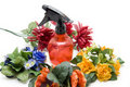 Free Flowers And Spraying Bottle Royalty Free Stock Photos - 17610308