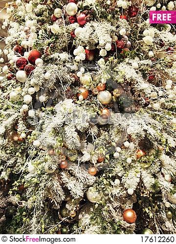 Free Xmas Tree Stock Photo - 17612260