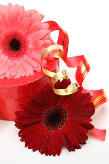 Free Gift And Flower Royalty Free Stock Photos - 17610868