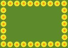 Free Daisy Flowers Illustration Stock Image - 17612241