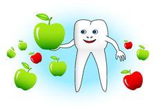 Free White Tooth Royalty Free Stock Photos - 17617898