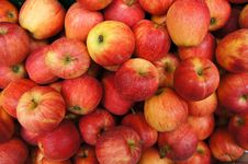 Free Apple Stock Images - 17618934