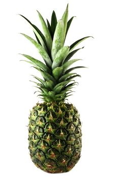 Free Pineapple Royalty Free Stock Images - 17619619