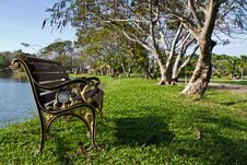 Free Bench In The Park Royalty Free Stock Images - 17620589
