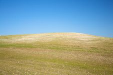 Free Hill Cultivation Royalty Free Stock Photo - 17620905