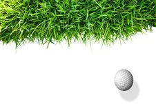 Free Golf Ball And Green Grass Royalty Free Stock Photography - 17623047