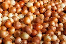 Free Background Of Onions Stock Photo - 17624200