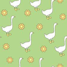 Free Gooses Stock Photos - 17626823