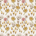 Free Seamless Flower Pattern Stock Images - 17634934