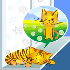 Free Vector Winter Dreams Ginger Cat Stock Photography - 17630512