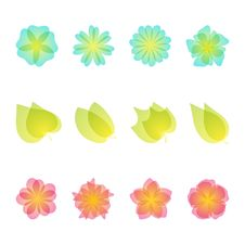 Floral Design Elements. Stock Images