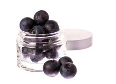 Free Fresh Blueberries In A Beauty Cream Jar Royalty Free Stock Images - 17632079