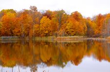 Free Autumn Reflection Stock Photos - 17632633
