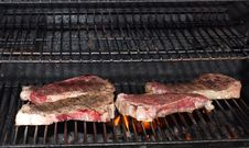 Free Steaks On The Grill Stock Photography - 17633312