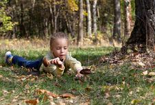 Free A Girl Is Laying On A Grass In The Forest Stock Photo - 17634810