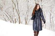 Free A Woman Is In The Winter Park Royalty Free Stock Images - 17634879
