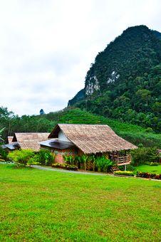 Free Nature At KhaoSok , Thailand Royalty Free Stock Photo - 17636505