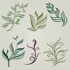 Free Vector Set Of Leafs Design Element Stock Photos - 17636573